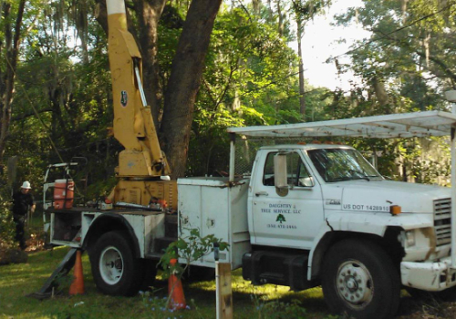 contact us daughtry tree service newberry fl
