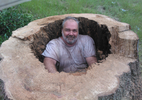 stump grinding daughtry tree service newberry fl