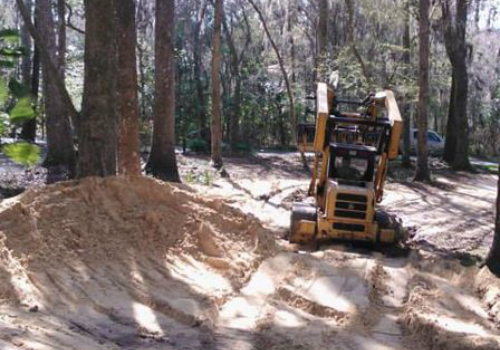 tree removal & trimming daughtry tree service newberry fl